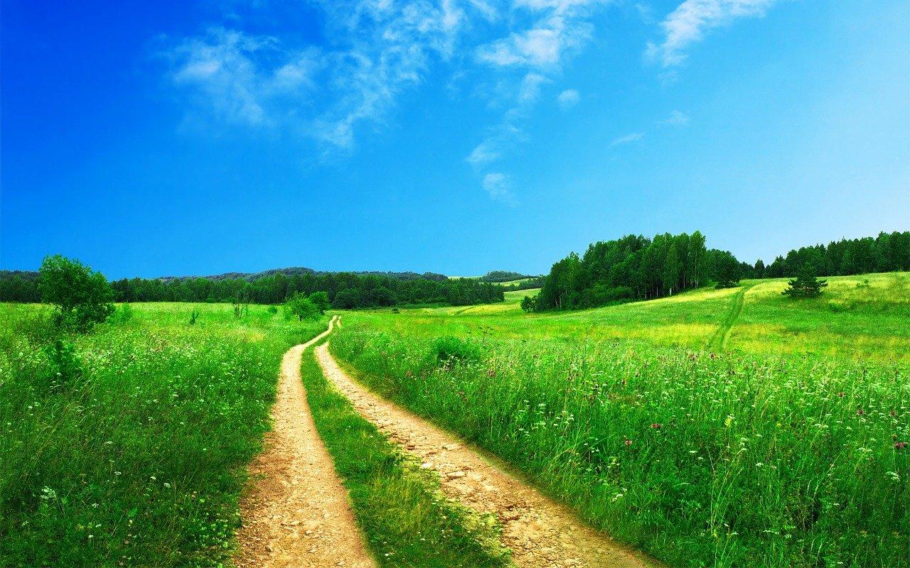 footpath, pathway, rural-691021.jpg